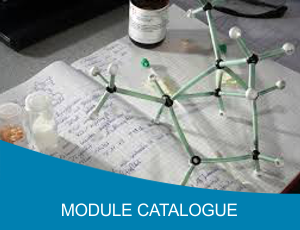 Module Catalogue.png